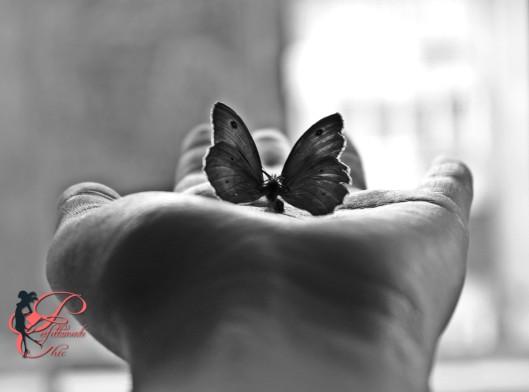 farfalla_perfettamente_chic