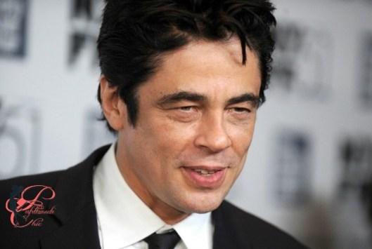 Benicio_del_Toro_perfettamente_chic.jpg