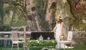 matrimonio_nel_bosco_perfettamente_chic_8