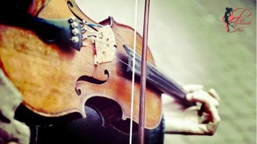 violino_perfettamente_chic.jpg
