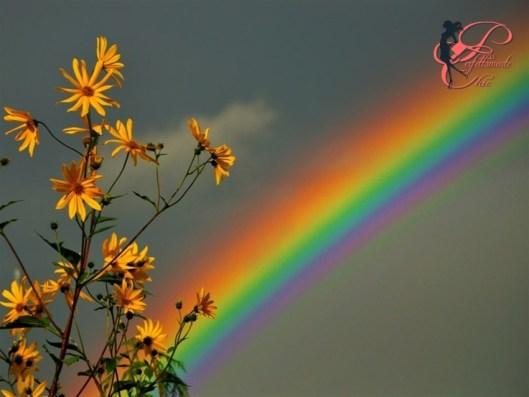 arcobaleno_perfettamente_chic.jpg