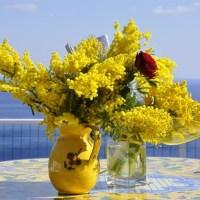 Un giorno di non solo mimose