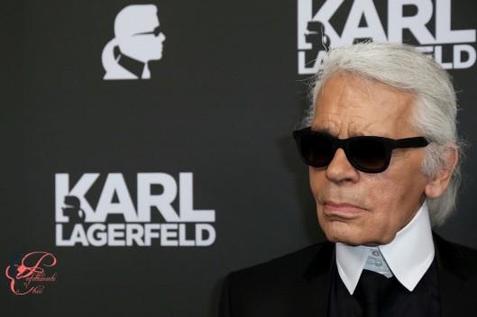 Karl Lagerfeld_perfettamente_chic.jpg