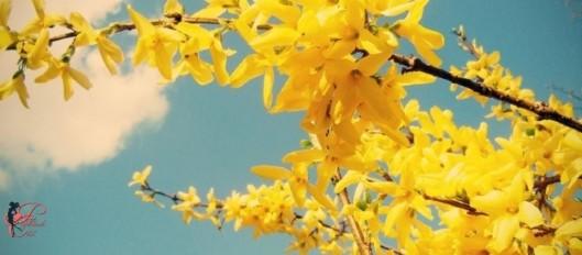 Primavera_perfettamente_chic_23.jpg