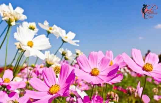 Primavera_perfettamente_chic_6.jpg