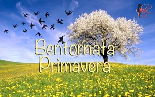 Primavera_perfettamente_chic_7.jpg