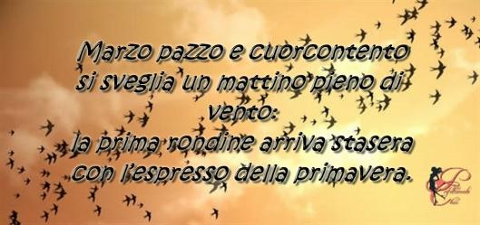 rondine_perfettamente_chic.jpg