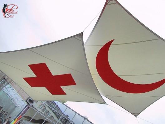 giornata_internazionale_croce_rossa_perfettamente_chic_logo