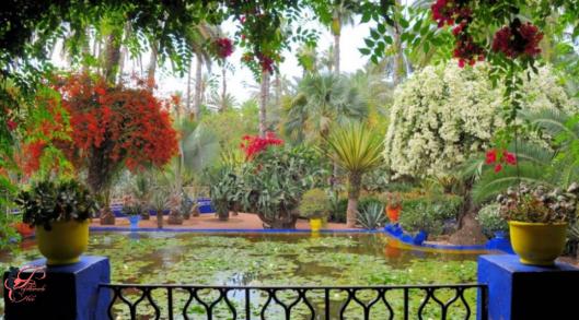 Yves_Saint_Laurent_YSL_perfettamente_chic_giardini_Majorelle_Marrakech.PNG