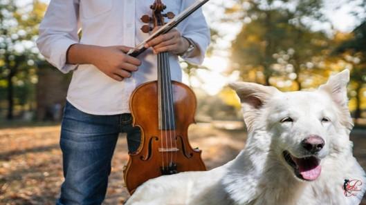 violino_perfettamente_chic_ragazzo